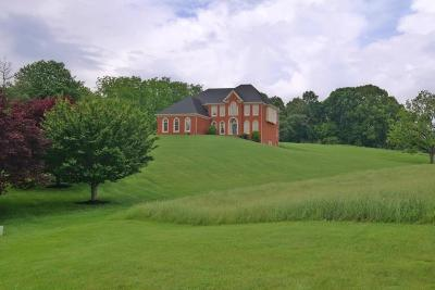 Botetourt County Single Family Home Sold: 481 Plantation Dr