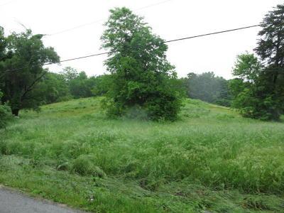 Roanoke Residential Lots & Land For Sale: Salem Tpke NW