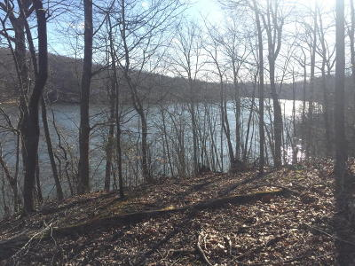 Residential Lots & Land For Sale: Walnut Run Dr