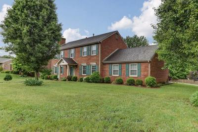 Vinton Single Family Home For Sale: 2045 Mountain View Rd