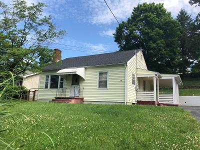 Vinton Single Family Home For Sale: 232 Raleigh Ave