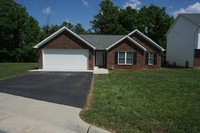 Roanoke County Single Family Home For Sale: 5331 Green Tree Ln