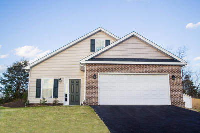 Roanoke County Single Family Home For Sale: 7910 Carriage Park Dr