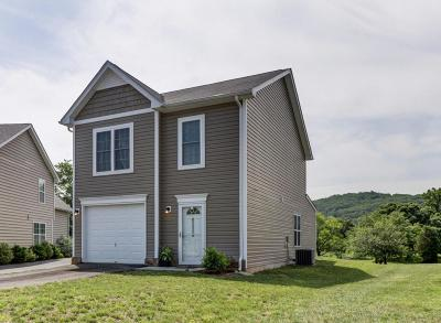 Roanoke County Single Family Home For Sale: 2606 Paddington Station Ln