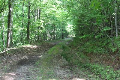 Bedford County, Franklin County, Pittsylvania County Residential Lots & Land For Sale: Nuckolds Rd