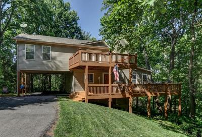 Roanoke County Single Family Home For Sale: 8082 Martins Creek Rd