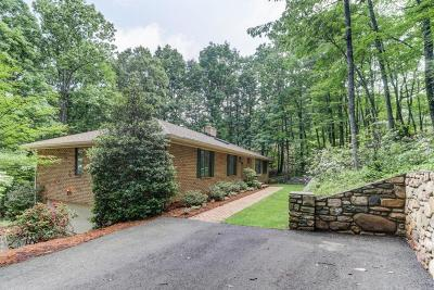 Roanoke County Single Family Home For Sale: 5301 Black Bear Ln