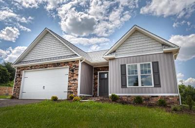 Single Family Home For Sale: 88 Primrose Ct