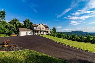 Botetourt County Single Family Home For Sale: 374 Mayberry Dr