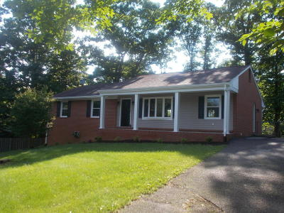 Botetourt County Single Family Home For Sale: 38 Woodlawn Ct