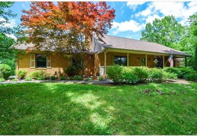 Troutville Single Family Home For Sale: 466 Woodridge Dr
