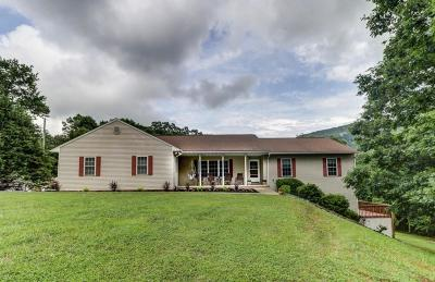 Rocky Mount Single Family Home For Sale: 185 Foxgrape Cir