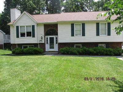 Botetourt County Single Family Home For Sale: 183 Fox Fire