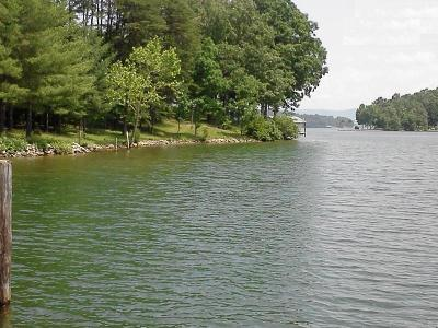 Bedford County, Franklin County, Pittsylvania County Residential Lots & Land For Sale: Merriman Way Rd