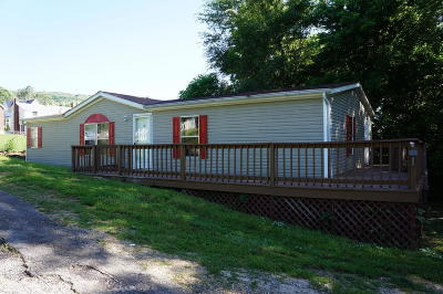 Botetourt County Single Family Home For Sale: 19459 Main St