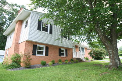 Roanoke County Single Family Home For Sale: 3158 Galloway Dr