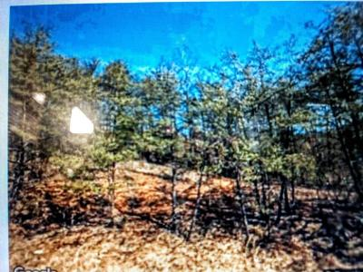 Roanoke Residential Lots & Land For Sale: Pitzer