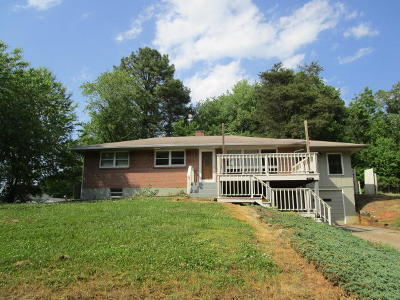 Pittsylvania County Single Family Home For Sale: 214 Ramp Rd