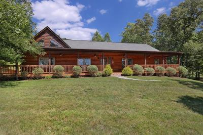 Botetourt County Single Family Home For Sale: 450 Kyles Mill Rd