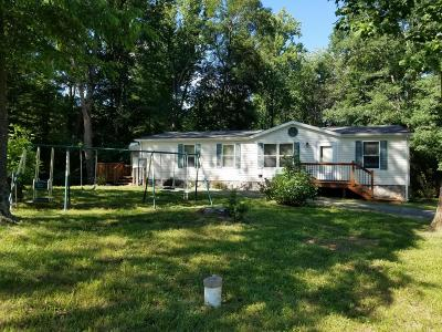 Bedford County Single Family Home For Sale: 141 Wellspring Rd