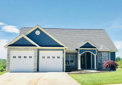Bedford County Single Family Home For Sale: 1029 Duck Key Ln