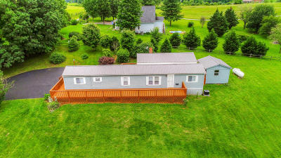 Botetourt County Single Family Home For Sale: 3290 Oak Ridge Rd
