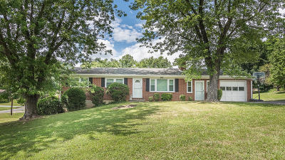 Troutville Single Family Home For Sale: 396 Dawnridge Ln