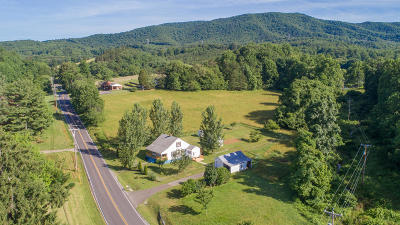 Botetourt County Single Family Home For Sale: 2330 Mountain Pass Rd