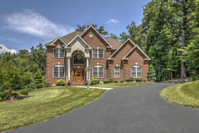 Roanoke County Single Family Home For Sale: 6702 Cotton Hill Ln