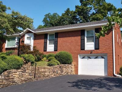 Roanoke Single Family Home For Sale: 2901 Lofton Rd
