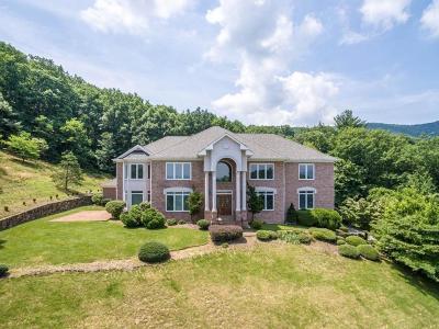 Roanoke Single Family Home For Sale: 6811 Fairway Woods Ct