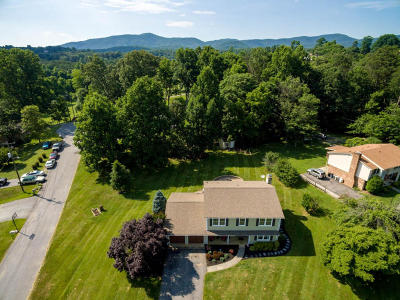Botetourt County Single Family Home For Sale: 25 Charmwood Dr