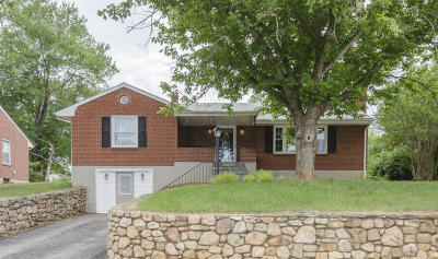 Roanoke Single Family Home For Sale: 4651 Elva Rd