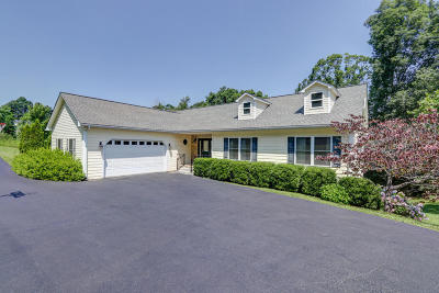 Moneta Single Family Home For Sale: 2847 Bluewater Dr