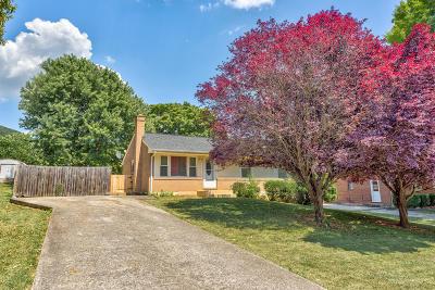 Roanoke Single Family Home For Sale: 4757 NElms Ln NE
