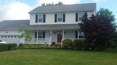 Roanoke County Single Family Home For Sale: 294 Ray St