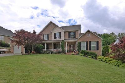 Daleville VA Single Family Home For Sale: $429,900