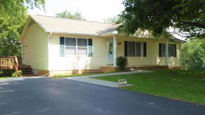 Rocky Mount Single Family Home For Sale: 221 Parkview Dr