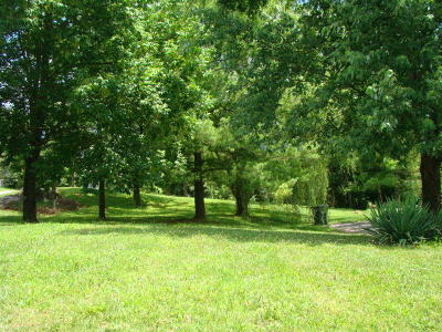 Salem Residential Lots & Land For Sale: 820 North Mill Rd
