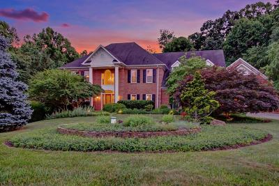 Roanoke Single Family Home For Sale: 1514 Strawberry Mountain Dr