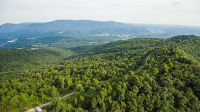 Residential Lots & Land For Sale: 4095 Reese Mountain Rd