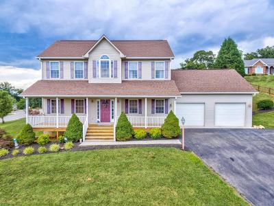 Roanoke Single Family Home For Sale: 3547 Pinnacle Ridge Rd NE