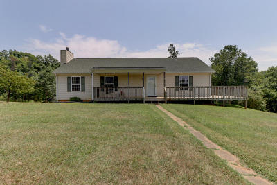 Bedford County Single Family Home For Sale: 2135 Pilot Mountain Rd