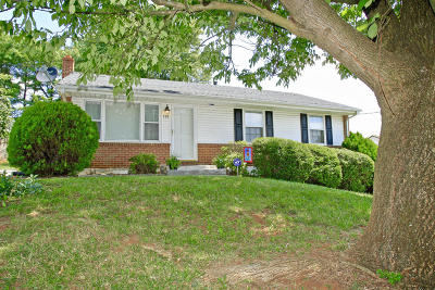 Vinton Single Family Home For Sale: 549 Holiday Rd