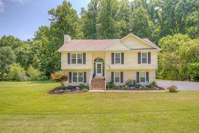 Blue Ridge Single Family Home For Sale: 1149 Mountain Pass Rd