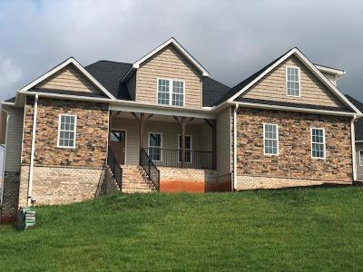 Bedford County Single Family Home For Sale: 1093 Autumn West Ct