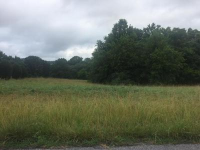 Bedford County Residential Lots & Land For Sale: Lot 3 & 4 Peakland Ct
