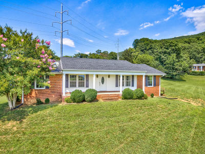 Single Family Home For Sale: 5633 Old Mountain Rd