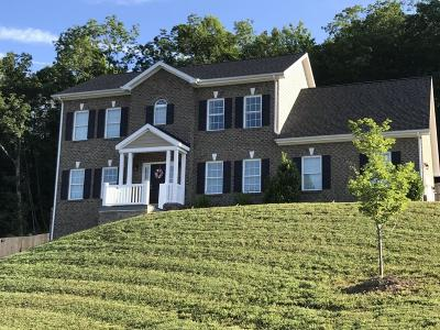 Roanoke County Single Family Home For Sale: 4217 Berkeley Place Dr