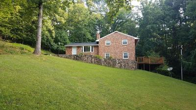 Botetourt County Single Family Home For Sale: 368 Beachview Ln